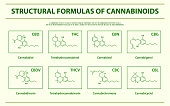 Structural Formulas of main natural cannabinoids horizontal infographic, healthcare and medical illustration about cannabis