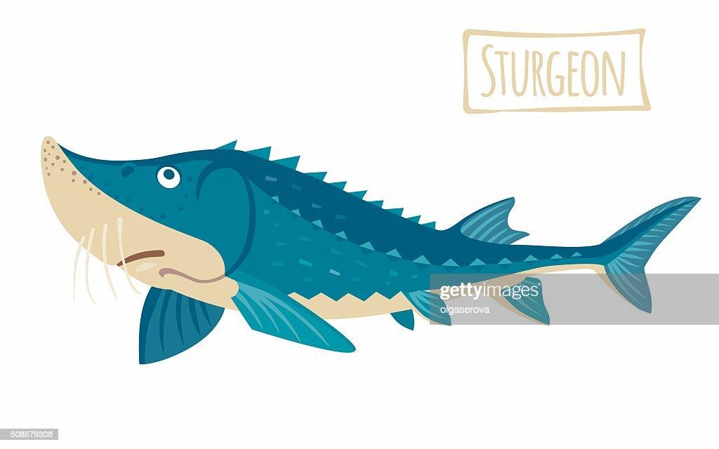Sturgeon : Clipart vectoriel