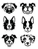 A set of 6 dog icons featuring the faces of a Pug, English Bulldog, Border Collie, Boston Terrier, Jack Russel Terrier, and a Dalmatian. Black and white vector symbols.