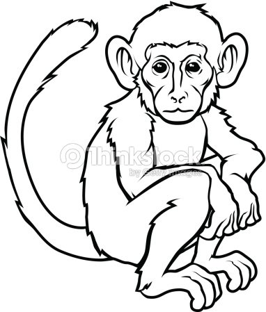 a9f8ccd33 Stylised Monkey Illustration stock vector - Thinkstock