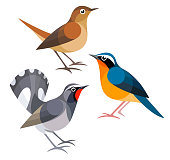 Stylized Birds - Nightingales