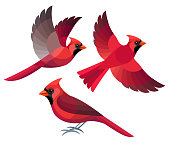 Stylized Birds - Northern Cardinal