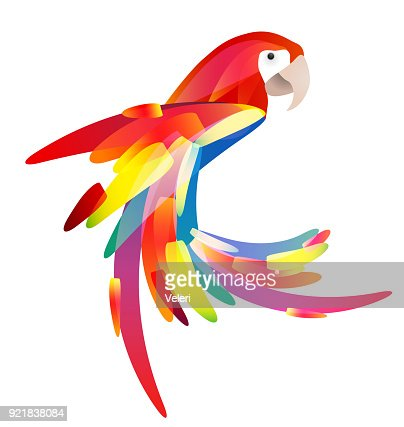 Stylized illustration of a parrot with a multicolored tail. : stock vector