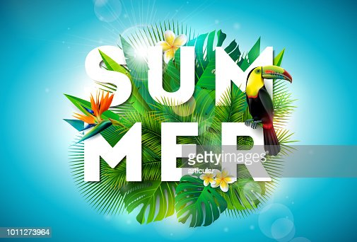 Summer illustration with toucan bird and parrots beak flower on tropical background. Exotic leaves with holiday typography element. Vector design template for banner, flyer, invitation, brochure, poster or greeting card. : stock vector