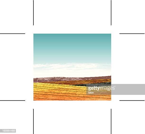 Summer landscape with hills
