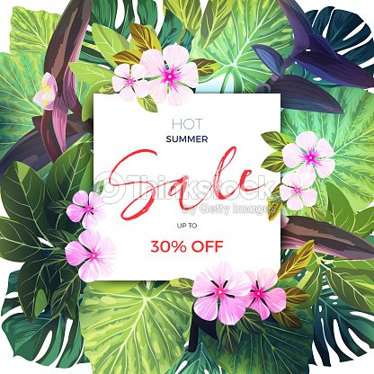Summer Tropical Banner With Exotic Pink And Purple Flowers Jungle Vector Fl Template