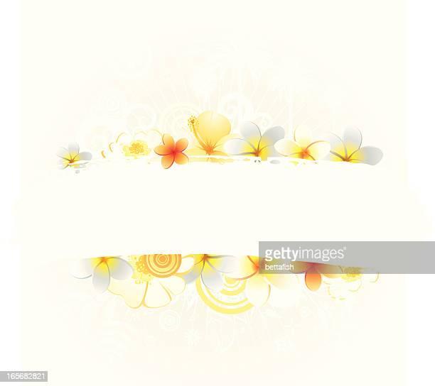 Sunshine-design