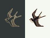 swallow bird logo design template. vector