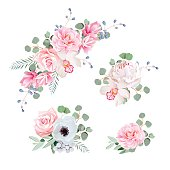 Sweet wedding bouquets of rose, peony, orchid, anemone, camellia, blue berries and eucaliptis leaves. Vector design elements..