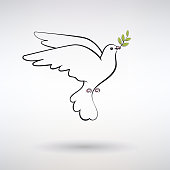 symbol dove of peace with olive branch