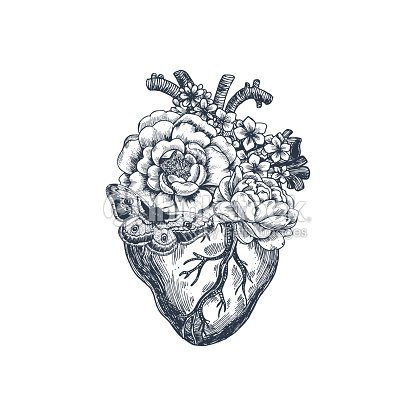 Tatuaje Vintage Ilustración De Anatomía Floral Corazón Anatómico ...