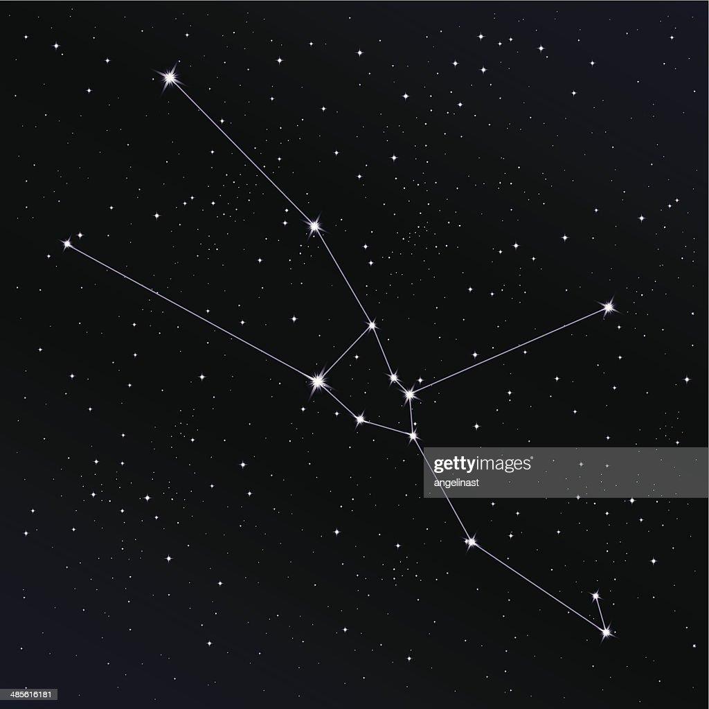 Taurus Constellation Vector Art   Getty Images