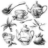 tea collection elements in graphic style, hand-drawn vector illustration.