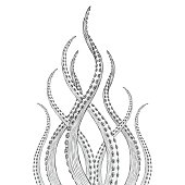 Hand Drawn illustrations of Tentacles
