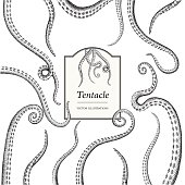 Hand Drawn Tentacle illustrations