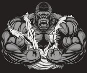 Vector illustration, ferocious gorilla bodybuilder shows his big biceps