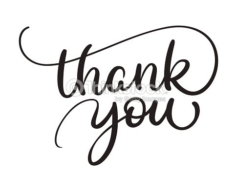 thank you text on white background calligraphy lettering vector