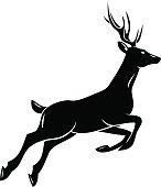 Deer; animal symbol, lemblem or sticker for branding, printing, sports team. Vector illustration
