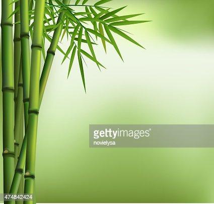 Die Grunen Bambus Vektorgrafik Thinkstock