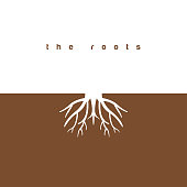 The roots graphic design template vector