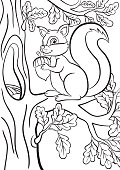 Coloring page. Little cute squirrel sits on the banch of a tree. The squirrel smiles and holds an acorn in the hands.