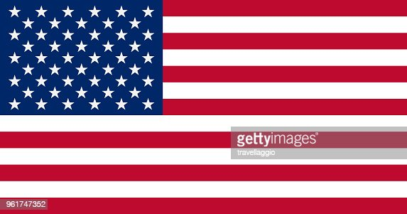 The United States of America Flag, vector illustration : Vector Art