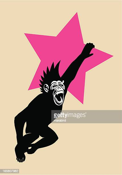 The Year of The Monkey Chimp Hanging from Red Star