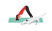Downward Facing Dog Pose - Adho Mukha Svanasana. The Young Woman Practicing Yoga. The White Dog Stretching Itself in the Same Position.