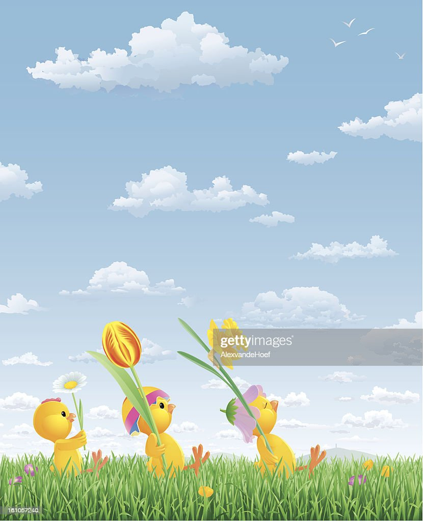 Three Baby Chicks Marching through Grass : Vector Art