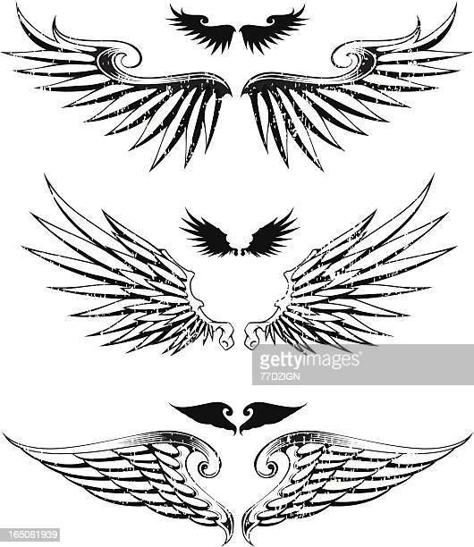 three distressed wings