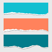 Three stripes of colored torn paper with shadow and with space for text, suitable for infographic or header - isolated on gray background - vector