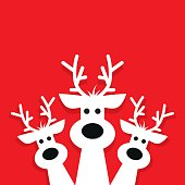 Illustration of three white reindeer on a red background.