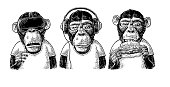 Three wise monkeys in headphones, virtual reality headset,and burger. Not see, not hear, not speak. Vintage black engraving illustration for poster. Isolated on white background