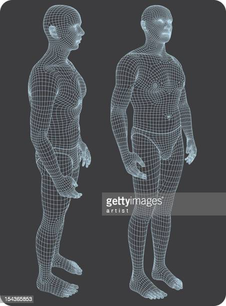 Three-dimensional human body