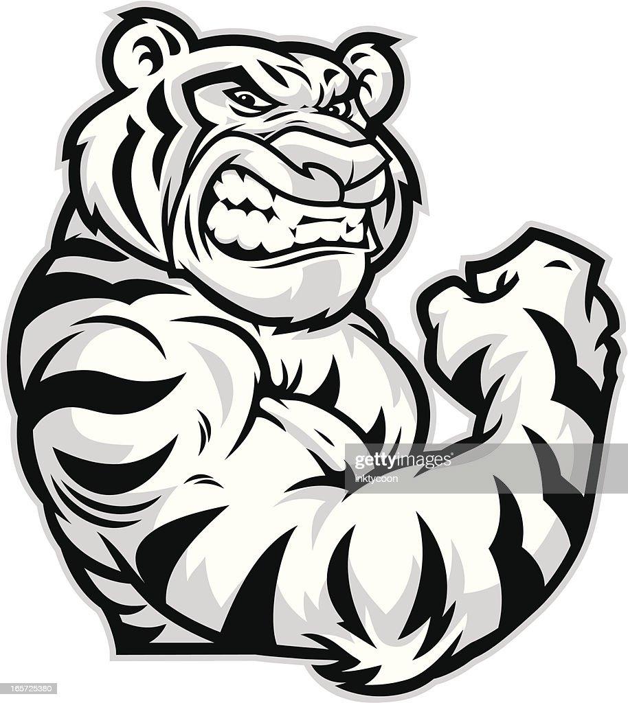 tiger mascot flexing vector art getty images