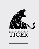 Fearless Tiger. Roaring Predator. Roaring Tiger. Tiger head, elegant tiger head. tiger half body. tiger head, roaring fang face. Combine with text