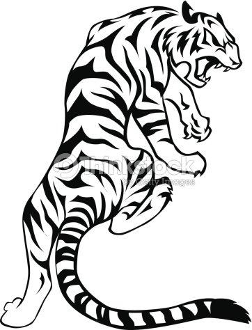 tiger vector art thinkstock