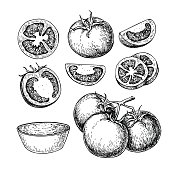 Tomato vector drawing set. Isolated tomato, sliced piece and tomato sauce. Vegetable engraved style illustration. Detailed vegetarian food sketch. Farm market product.