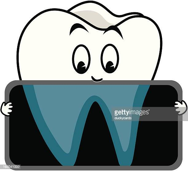 Tooth X-ray (vector)