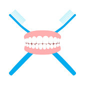 Flat Design Vector Illustration Of Toothbrushes And Artificial Teeth.