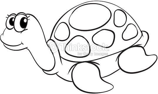 Tortue croquis clipart vectoriel thinkstock - Clipart tortue ...