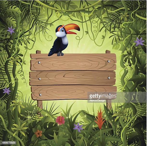 Toucan and Wooden Banner in the Jungle