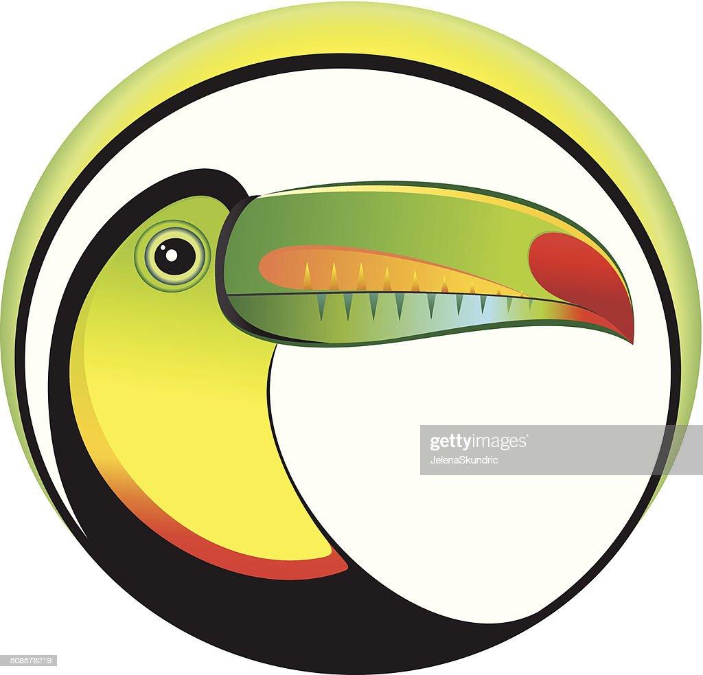 Toucan : Vector Art