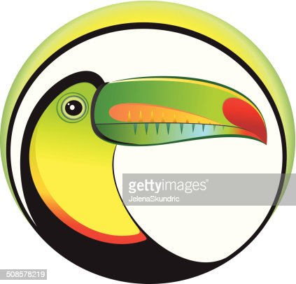 Toucan : Vector Art