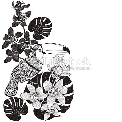 Toucan With Tropical Floral Monochrome L Background Vector Art
