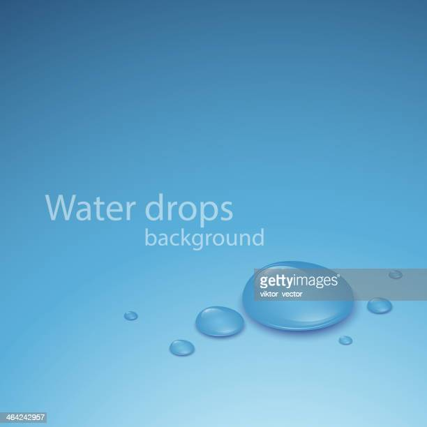 Transparent Water Drop. Vector illustration