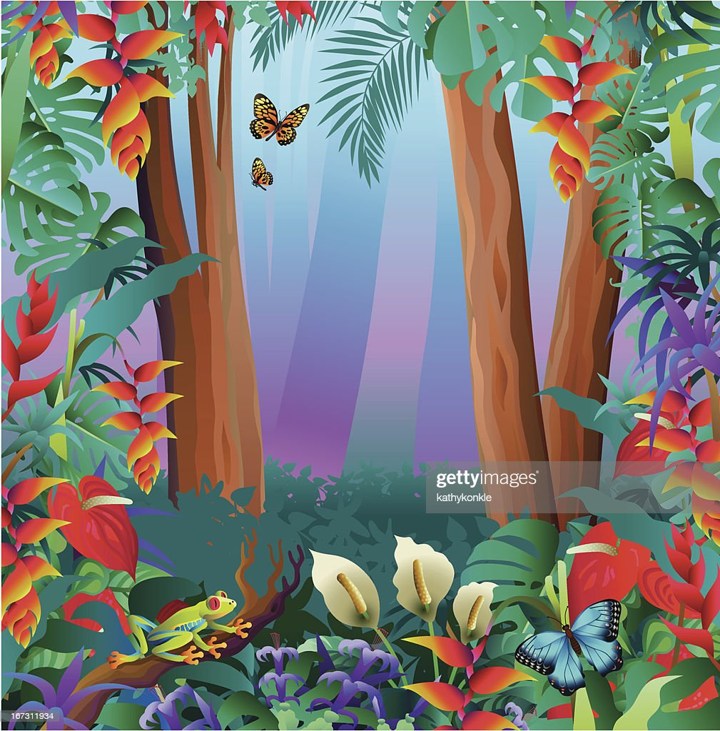 tree frog and butterflies in the rainforest : Vector Art