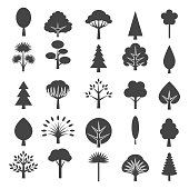 Tree icons isolated on white background. Coniferous and deciduous trees vector graphic symbols