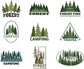 Tree outdoor travel green silhouette forest icon coniferous natural badge tops pine spruce branch cedar and plant leaf abstract stem drawing vector illustration. Panorama scene horizon decoration.