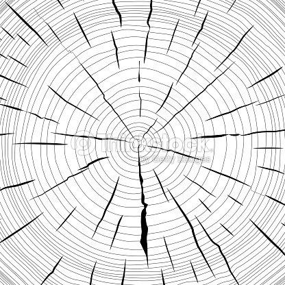 Anneaux arbre de scie coupe tronc darbre clipart vectoriel - Coupe transversale d un tronc d arbre ...